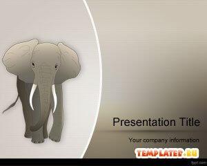 С животными для презентаций powerpoint