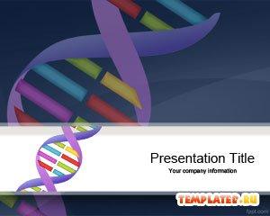 Генетика и ДНК