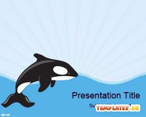 Морской кит