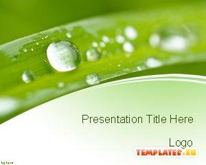 Шаблон PowerPoint Охрана природы