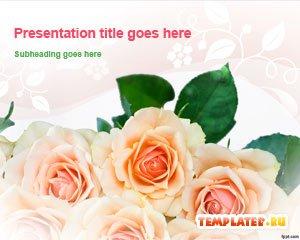 Шаблон PowerPoint Алые розы