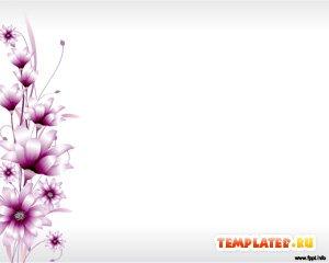 Шаблон PowerPoint Фиолетовые цветы