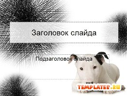 Шаблон PowerPoint Белая собака